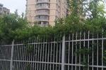 大自然华城公寓